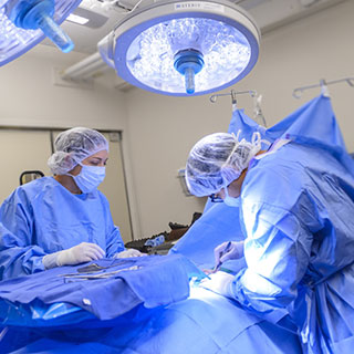 Surgical technologists assisting in surgery